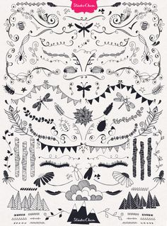 HUGE Hand drawn Nature Pack Elements by Studio Chem on Creative Market