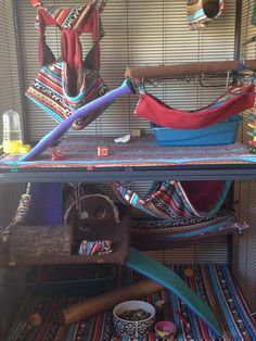 This is my critter nation cage. I made all of the hammocks myself! Spoiled rats :)