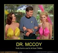 See McCoy can get the girl.