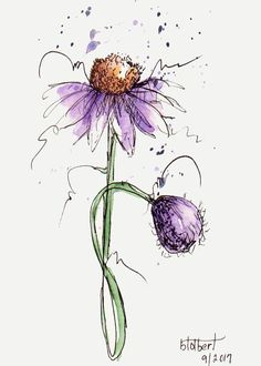 "Original artwork of lovely cone flower with a single purple bud rendered in pen, ink and watercolor. It is titled ""Purple Passion"" and is signed and dated at the bottom with the title on the back. Droplets of purple and payne grey watercolors are dotted from the top of the flower #watercolorarts"