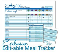 21 Day FIX Sneak PEEK!! WITH bonus editable PDF Meal Tracker Download (FREE)