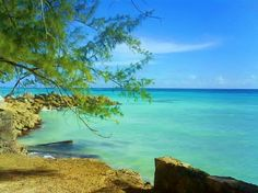 Barbados Barbados Places to Visit Доступ к нашему сайту намного больше информации Barbados Resorts, Windward Islands, Water Island, St Vincent Grenadines, Most Beautiful Beaches, Beautiful Places, Little Island, Beaches In The World, Caribbean Sea