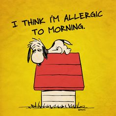 Monday morning.