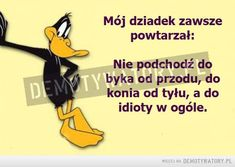 idiota grafika w We Heart It Inspirational Thoughts, Positive Thoughts, Positive Quotes, Motivational Quotes, Weekend Humor, Just Smile, Man Humor, Self Development, Wise Words