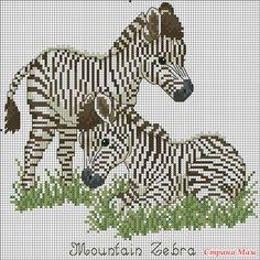 Канва для вышивки крестом Зебры 0305212524 - Дикие животные - KRESTIK.IN.UA