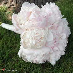 Blush peony bouquet - so classic for a spring wedding! Looks simple, but is so stunning! It's easy to create this bouquet - DIY instructions on Flower Muse blog. Blush Peonies, Peonies Bouquet, Peony, Diy Wedding, Dream Wedding, Wedding Ideas, Blooming Flowers, Real Flowers, Diy Bouquet