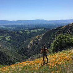 grass mountain hike santa ynez