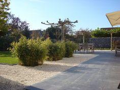 Tuin in Culemborg