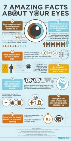 Yes are the prime organs of human body.  It is always interesting to know about eyes. The Infographic contains few amazing facts regarding eyes. The melanin, a dark brown pigment, determines the color of eyes. The more melanin, the more brown colored are eyes. However, people with blue colored eyes share a common ancestor with every other blue-eyed person in the world.