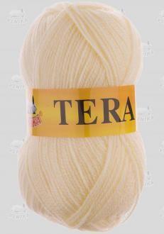 TERA č. 204