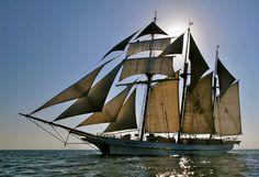 Three-masted topsail schooner, the SSV Tole Mour. Full Sail, Sail Boats, Canoe And Kayak, Sail Away, Tall Ships, Water Crafts, Ancient Art, Seas, Sailing Ships
