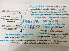 Estudante cria página no Facebook com resumos para o Enem