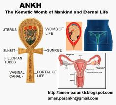 Nuta's Ankh: ANKH The Kemetic Womb of Mankind and Symbol of Eternal Life – Astrologie Egyptian Mythology, Egyptian Symbols, Ancient Symbols, Egyptian Art, Ancient Egypt, Mayan Symbols, Viking Symbols, Viking Runes, Les Chakras
