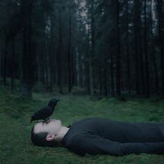 A Forest Tale | by Gabriel Isak
