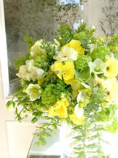 mimosa and ranunculus