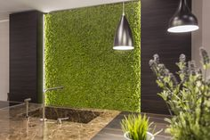 Oryginalny mech włoskiej marki Moss Trend, to idealne rozwiązanie dla przestrzeni w nowoczesnym stylu. Ta ekologiczna dekoracja o szerokiej palecie...
