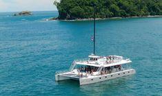One Day Catamaran Tour in Manuel Antonio from San José Gallo Pinto, Dolphin Tours, Quepos, Gran Hotel, Last Minute Deals, Puntarenas, Enjoy The Sunshine, Tour Operator, Whale Watching