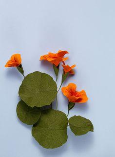 DIY paper flowers: Nasturtium wreath - Sonolina N - How To Make Paper Flowers, Paper Flowers Craft, Paper Crafts Origami, Origami Flowers, Flower Crafts, Fake Flowers, Diy Flowers, Fabric Flowers, Flor Magnolia