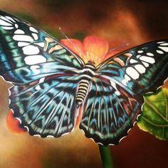 """Mariposa"" óleo, autor : Maria Noemi"
