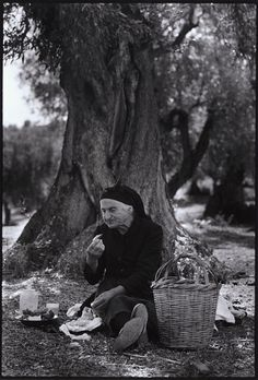 "Lunch in an olive grove.""A Greek Portfolio"" Costa Manos/Magnum Photos Greece Pictures, Old Pictures, Old Photos, Greece Photography, Old Photography, Documentary Photographers, Famous Photographers, Magnum Photos, Greece People"