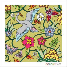 Curtsy of colorfy