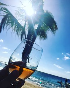 #palmtrees #relaxtime #wijn #zon #goedeleven #love #bonaire #sealife #beach