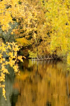 Finland, Photos, Pictures, Fall, Places, Autumn, Fall Season, Grimm, Lugares