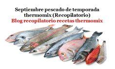 Recopilatorio de recetas thermomix: Septiembre pescado de temporada thermomix…