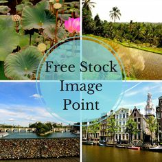 Free Stock Photos: 74 Best Sites To Find Awesome Free Images – Design School Stock Photo Sites, Free Stock Photos, Free Photos, Image Sites, Best Sites, Selling Art, School Design, High Quality Images, Royalty Free Images