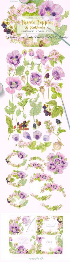 Purple Poppies&Blackberries-Clipart by watercolorwild.graphics on @creativemarket