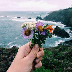 by @lauren_yup_   -   #flowerswalkwithme