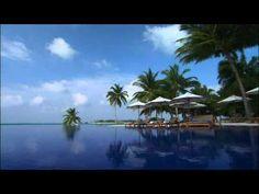 YouTube Conrad maldivies