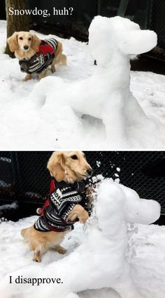 """""""♥ artonsun - DOG ♥"""" - [Note to self: also sent to A.L. w/this msg: """"Not yet the season, but who cares? Too cute to ignore.""""]"""