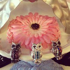 Owl rings, only $4, at Divine Divas in Longmont.