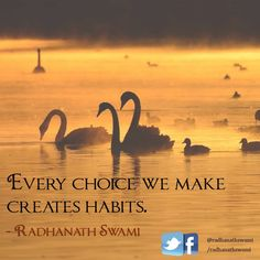 Radhanath Swami: Inspirational words of wisdom by Radhanath Swami, spiritual leader and teacher of bhakti-yoga for over 40 years. Inspirational Words Of Wisdom, Wisdom Quotes, Quitting Quotes, Indian Philosophy, Bhakti Yoga, Krishna Quotes, Hare Krishna, Quote Posters, Spiritual Awakening