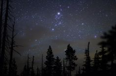 stars photography - Google Search