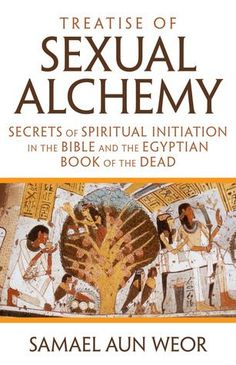 Secrets of Spiritual Initiation in Medieval Alchemy, the Bible, and the Egyptian Book of the Dead Treatise of Sexual Alchemy reveals the true meaning of the genuine documents and symbols used by the medieval alchemists, such as Paracelsus, Basil Valentine Books To Read, My Books, Magick Book, Occult Books, Black History Books, Book Of The Dead, Alchemy Symbols, History Facts, Art History