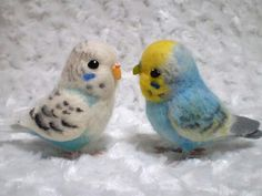 FELTED BUDGIES OF CUTENESS