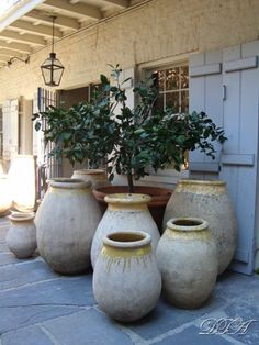 Vintage olive jar planters from Antiques De Provence, Royal Street, NOLA Provence, Landscape Design, Garden Design, Landscape Elements, Olive Jar, Pot Jardin, French Country Style, Rustic French, French Decor
