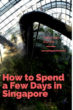 How to Spend a Few Days in Singapore - a two day guide.