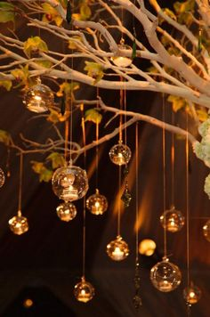 Glass bubbles hold tealight candles and gracefully descend from limbs of a tree / http://www.deerpearlflowers.com/wedding-ideas-using-candles/4/