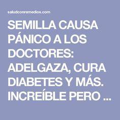 SEMILLA CAUSA PÁNICO A LOS DOCTORES: ADELGAZA, CURA DIABETES Y MÁS. INCREÍBLE PERO CIERTO!!! | Salud con Remedios