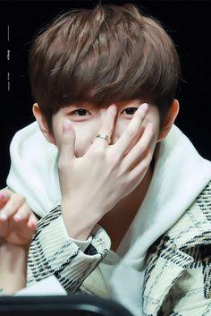 Pretty Hands, Beautiful Hands, Jinyoung, Jaehwan Wanna One, Daniel Henney, Lee Daehwi, Ong Seongwoo, Kim Jaehwan, Avicii