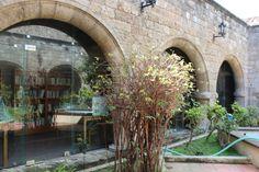 Castellania - Library - Garden