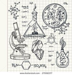 stock-vector-hand-drawn-linear-laboratory-icons-vector-illustration-vintage-lab-set-science-objects-doodle-275592377.jpg 450×470 pixels