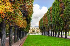 Jardins e parques da França Sidewalk, Country Roads, Mansions, House Styles, Landscaping, Travel, Garden, Screenwriting, World