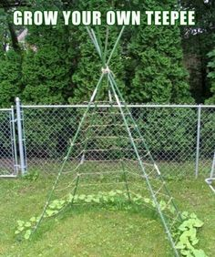 Idea for vertical gardening