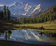 The highest mountain face in the world Fairy Meadows Pakistan   by Tahsin Anwar Ali [1200 x 982]