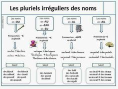 Français langue étrangère: PLURIEL DES NOMS