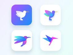 Photography App (Humming bird exploration WIP)